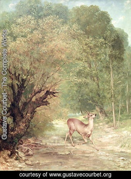 The Hunted Roe-Deer on the alert, Spring, 1867