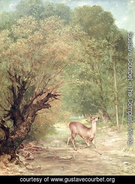 Gustave Courbet - The Hunted Roe-Deer on the alert, Spring, 1867