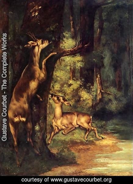 Gustave Courbet - Male and Female Deer in the Woods