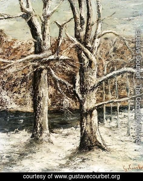Gustave Courbet - Woods in the Snow