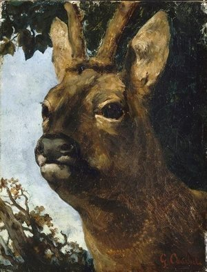 Gustave Courbet - Head of a Young Doe
