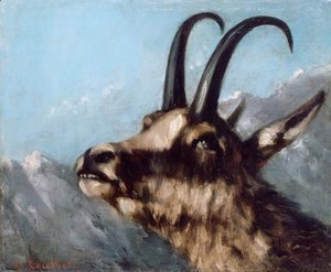 Gustave Courbet - Head of Gazelle